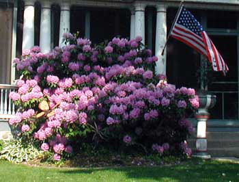 Flowers and Flag in Ligonier